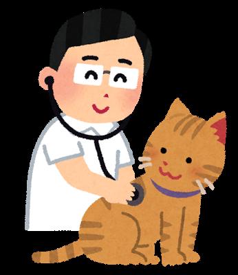 pet_kenkou_shindan_cat